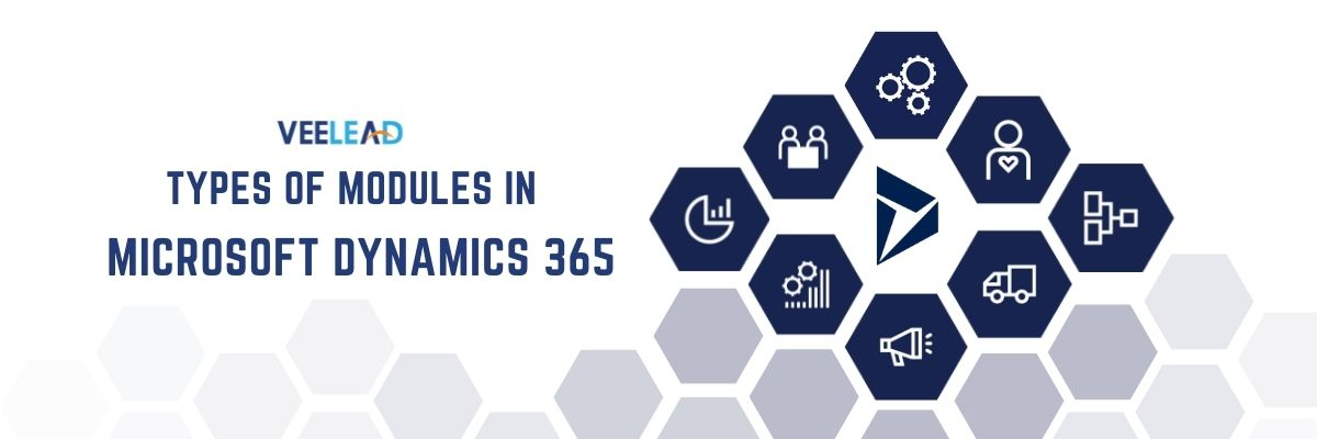 Types of Modules in Dynamics 365